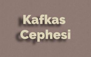 Kafkas Cephesi