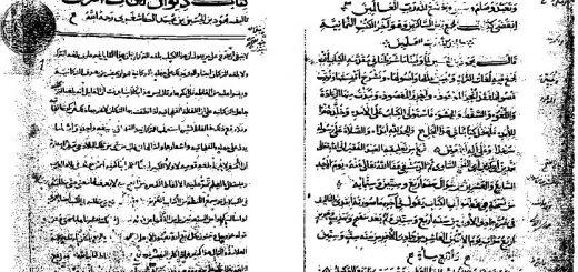 Divan-ı Lugati't-Türk, Kaşgarlı Mahmud