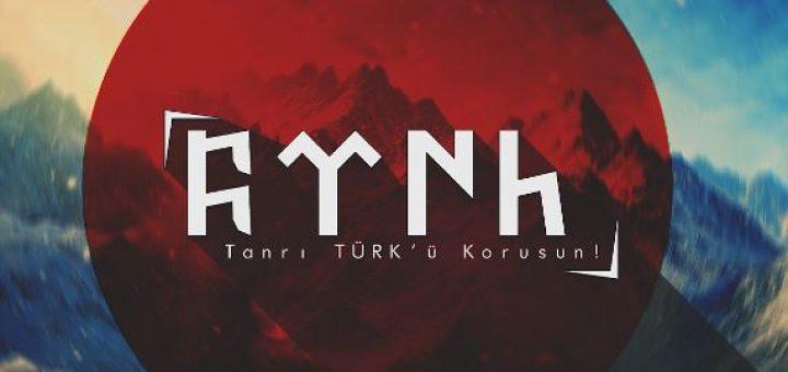 Türk, Türkçülük Akımı